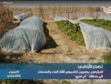 تصحر الاراضي: المزارعون يهجرون اراضيهم لقلة الماء  والخدمات