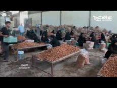 تقرير قناة الحره عراق حول اليد العاملة في كربلاء برنامج الاسبوع الاقتصادي