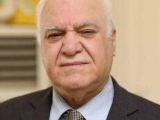 د. مظهر محمد صالح *: السوق العراقية والأحيائية الاقليمية الأثنية – الطائفية